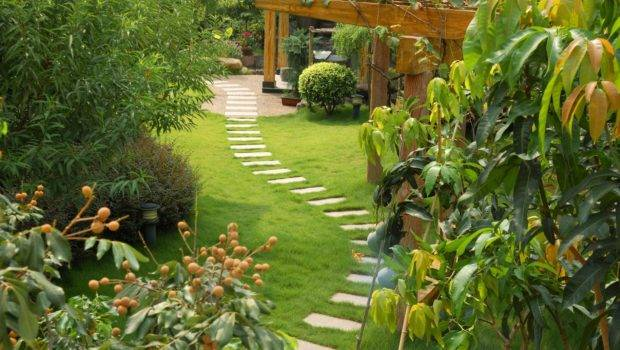 Stone Path Easy Diy Project Garden Patio Home Guide