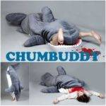 Streets Beige Shark Sleeping Bag Chumbuddy Pre Order Now
