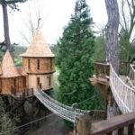 Tree Houses Would Love Live Places Your