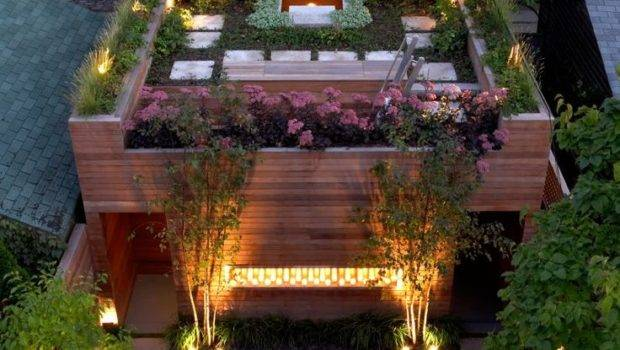 Types Plant Decorate Roof Garden Theydesign