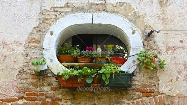 Unique Window Potted Plants Venice Building