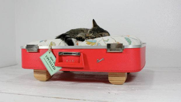 Upcycle Recycle Reuse Upcycled Vintage Red Suitcase Pet Bed