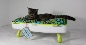 Upcycled Vintage Gear Ultimate Pet Bed Upgrade