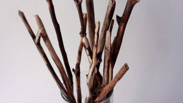 Vase Natural Rustic Branches Woodland Home Decor Cylinder