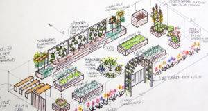 Vegetable Garden Design Plans Graphic Software Named Splash