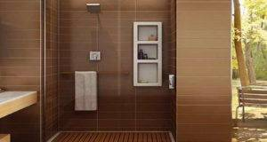 Walk Shower Designs Ideas Transparent
