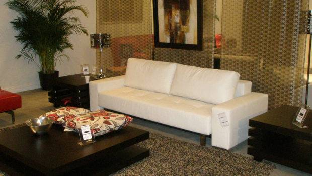 Wholesale Furniture Brokers Campaigns Support
