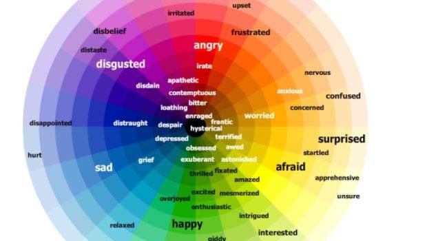 Year Blog Phse Emotions